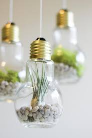 terrarium design how to make a succulent terrarium in a jar succulent terrarium ideas how