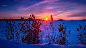Winter Sunset 4k Ultra HD Wallpaper ...