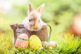 What's open and what's closed over the Easter long weekend - HalifaxToday.ca