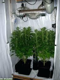 closet grow room setup closet grow setup ordinary closet grow setup 4 and finally the closet grow room setup