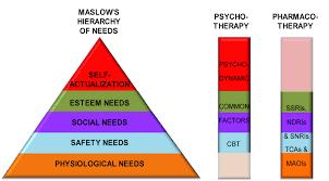 essay on depression disorder locavores ap essay grading