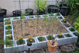 florida vegetable gardening. Florida Gardening Ideas Vegetable Creative P