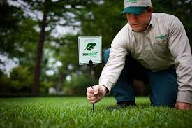 customer reviews trugreen lawn care service