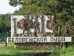 Портал о дикой природе Беларуси наука экология охрана природы  Беларусь рассчитывает на скорейшее продление диплома Совета Европы для Беловежской пущи