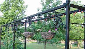 Photo 4 of 7 Image Of: Popular Grape Vine Trellis (awesome Build Grape  Trellis #4)