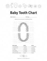 Baby Tooth Eruption Chart Free Printable Keep Track Of