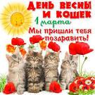 С днём кошек фото