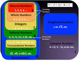 Rational Numbers Venn Diagram Worksheet Venn Diagram Natural Whole Numbers Wiring Diagram