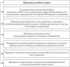 Понятие Семейное Право Как Отрасль Права Портал правовой информации Семейное право как отрасль права шпаргалка