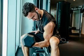 Mehr muskeln mehr fettverbrennung