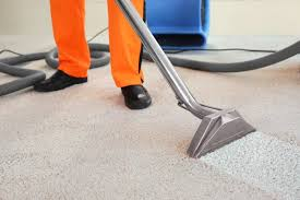 photos for sparky carpet cleaning