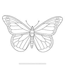 Vlinders 0031 Lente Drawings Animals Pets En Mandala