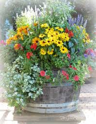 container gardens. While Out Shopping The Other Day I Spotted These Colorful Container Gardens Spilling Over With Beautiful Blooms. They Were On A Patio In Direct Sun