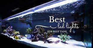 best led lights for reef tank in 2017 market top 5 reviews december 2017