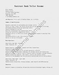 Lovely Lead Teller Resume Images Documentation Template Example