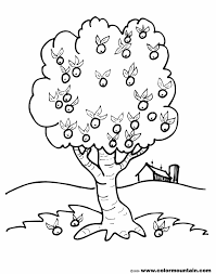 Small Picture Fruits Coloring Pages Simple For Kids Printable Tree Page Free