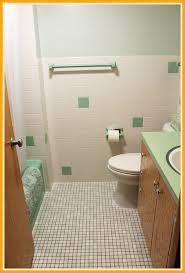bathroom tile remodel. Bathroom Tiles Green Amazing Kate U Remodel Lite Before And After For Tile E