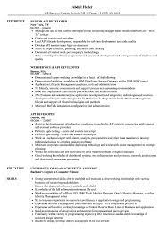 To build applications with this architectural style developers need tools and technologies. Api Developer Resume Samples Velvet Jobs