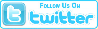 Image result for follow on twitter logo
