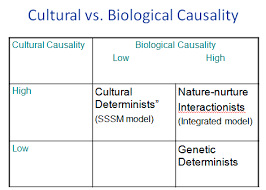 nature nurture debate essay nature vs nurture essay outline on