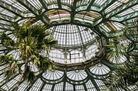 tree architecture window glass canopy palm facade botany garden greenhouse material stained glass art symmetry dome