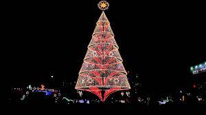 tallest christmas tree philippines um