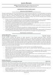Data Analyst Resume Extraordinary Sample Business Analyst Resume Entry Level Sample Data Analyst