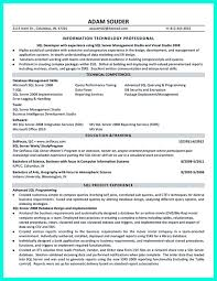 Sql Server Developer Resumes Pin On Resume Sample Template And Format Resume Examples