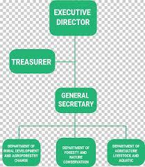 Organizational Chart For Non Profit Organization Organizational Chart Non Governmental Organisation