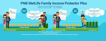 term life insurance policy premium