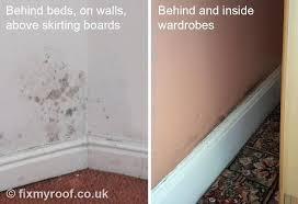 black mold in bathroom wall removal kill black mold on bathroom ceiling tile black