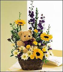 garden grove florist bear and basket