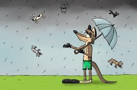 animated raining cats and dogs. Interesting Dogs Raining Cats And Dogs Image Credit Wrightwoodcalifcom With Animated And Dogs S