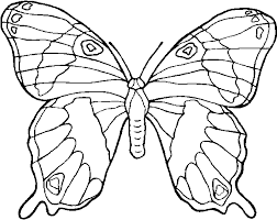 I Disegni Per Bambini Farfalle By Megghycom