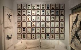 natural curiosities wall art