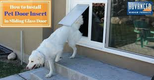 pet door how to install the glass insert yourself window dog sliding for cats