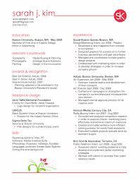 Designer Resume Objective Resumes Pinterest Design Resume And