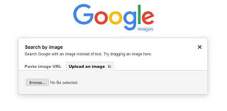 Heres Why You And Your Business Should Use Reverse Image