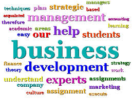 business development assignment help online business studies  assignment help for business development