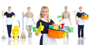 Cleaner House House Cleaner
