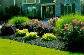 20 Fabulous Rock Garden Design Ideas Easy Rock Garden Designs Complete Master Plans We Are With