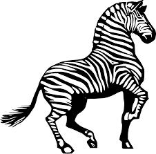 Dessin Zebre A Colorier Fantastique Galerie Silhouette Zebre