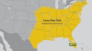 Lone Star Tick Can Cause Red Meat Allergies - YouTube
