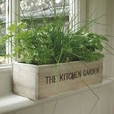 Unwins Kitchen Garden Herb Kit on Sale | Fast Delivery | Greenfingers.com