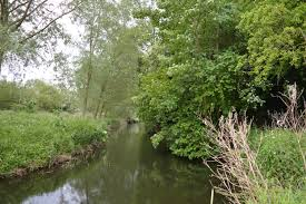 Bocking Blackwater