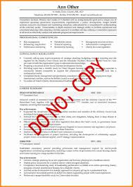 cv format buyer resume example of written cv executive%20cv%201 1 jpg