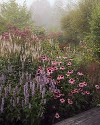 Small Picture Best 25 Perennial gardens ideas on Pinterest Perennials Summer