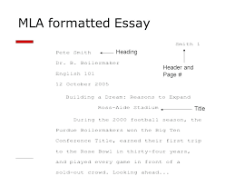 Mla Essays Examples Research Paper Best Academic Writers That