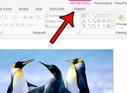can i put a border around a picture in powerpoint 2016