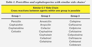 Antibiotic Allergy Chart Www Bedowntowndaytona Com